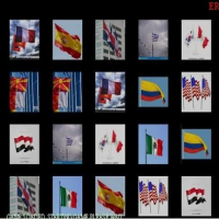 Memorize the flags