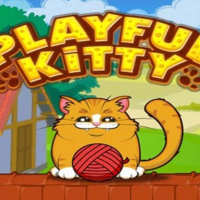 Playful Kitty Online